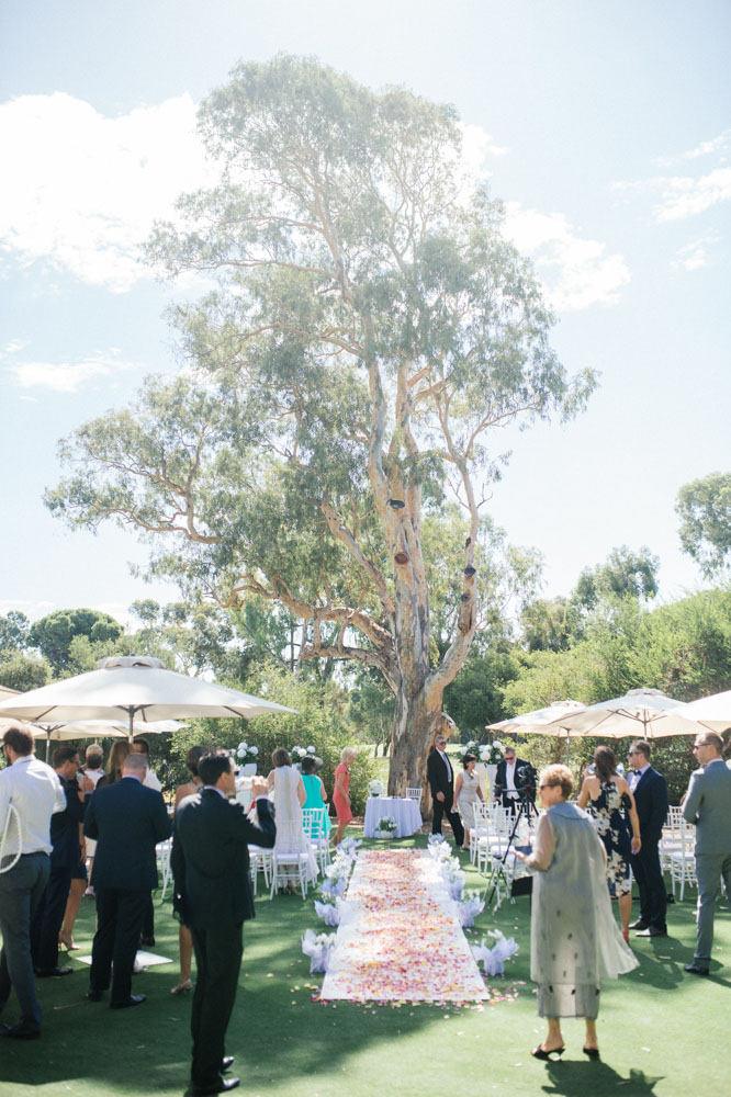 ceremony-tree.jpg