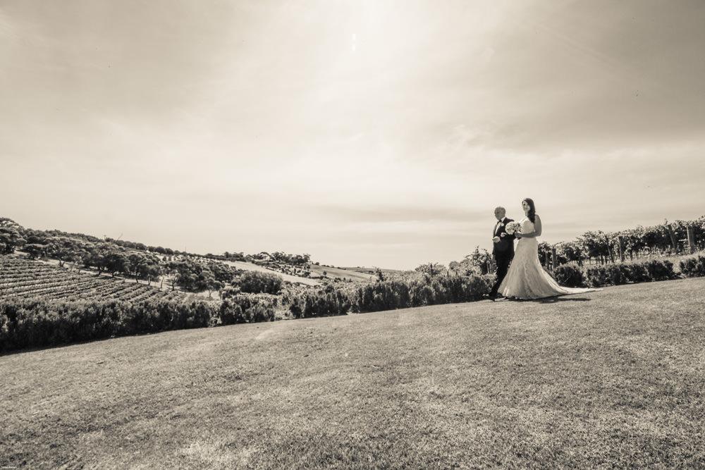 mclaren-vale-wedding-photographer-77.jpg