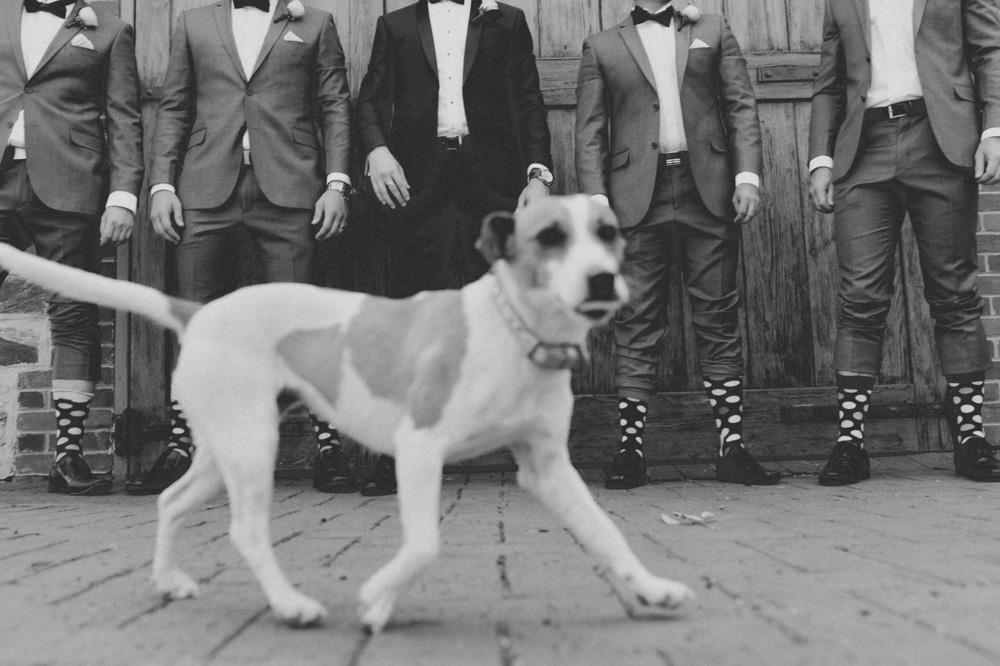 mclaren-vale-wedding-photographer-111.jpg