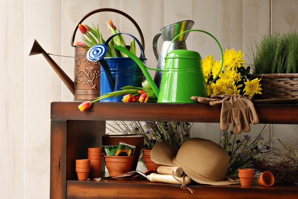 Variety of gardening tools.jpg
