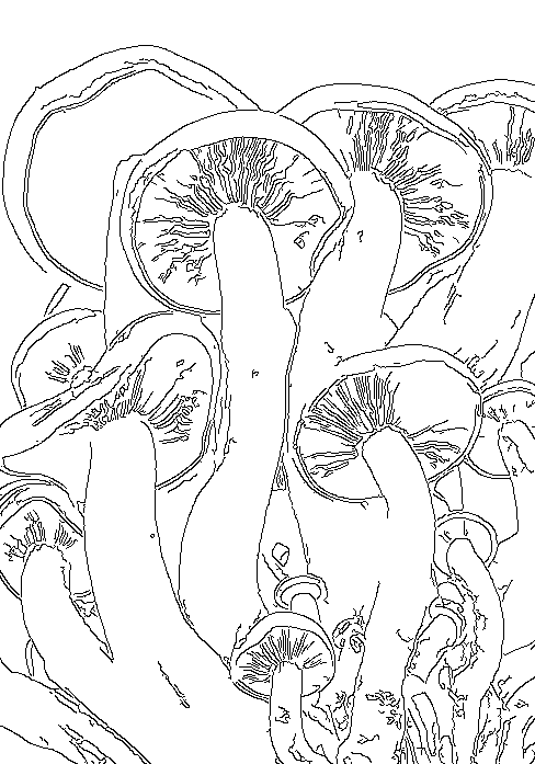 If you would like to use this pattern for your art projects, you can save this image by right clicking.