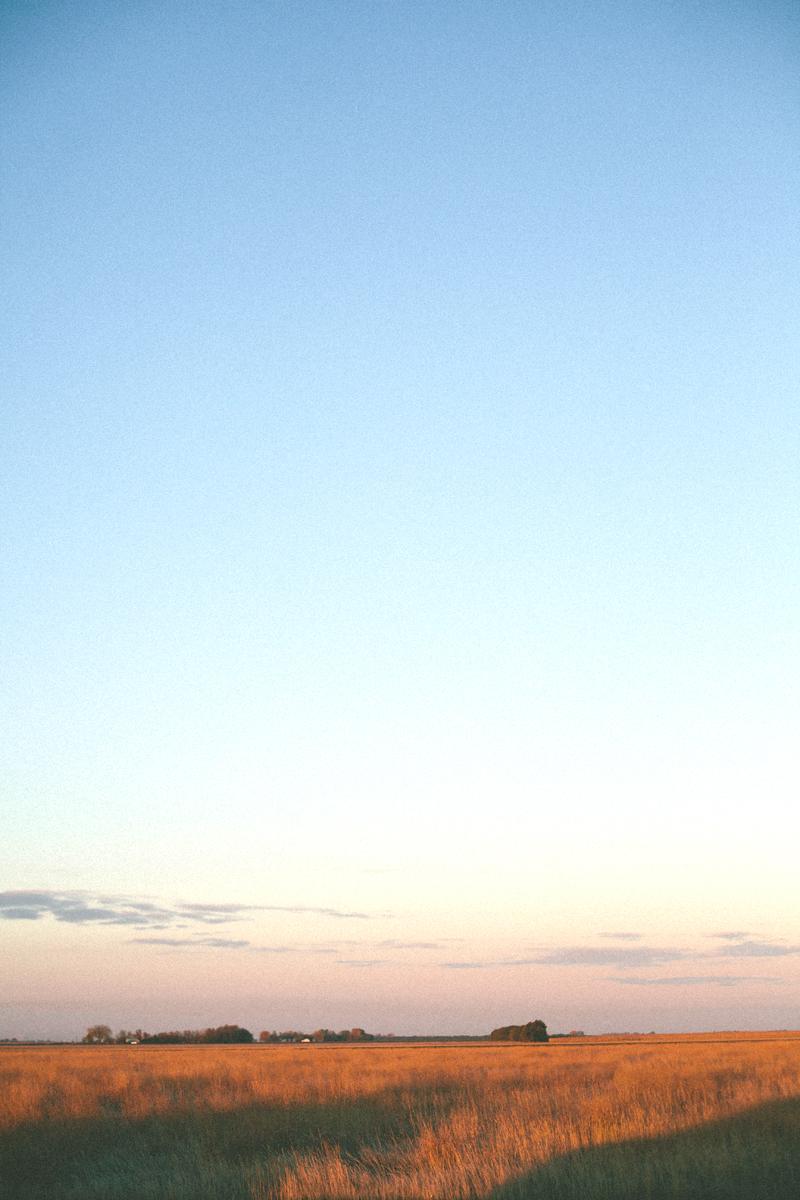 morningfarm2.jpg
