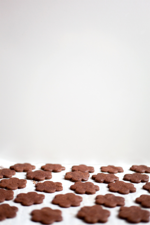 chocolate-cookies-4.jpg