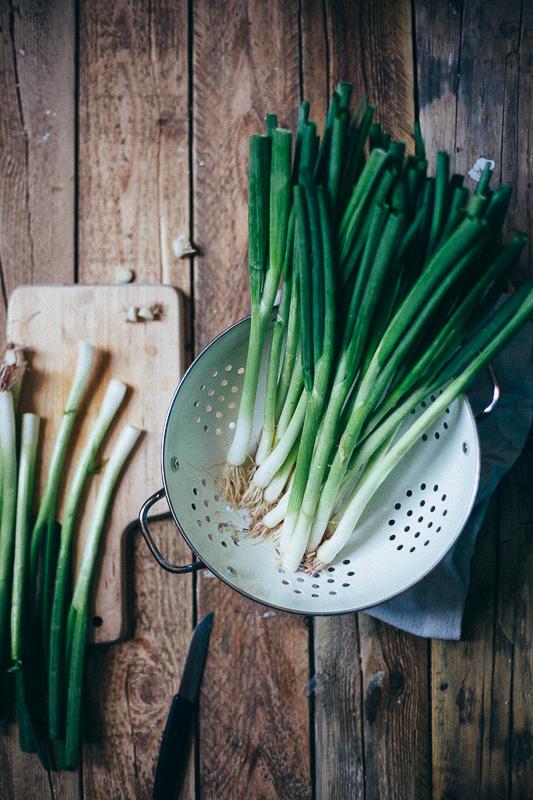 grilled-green-onions-romesco-11.jpg