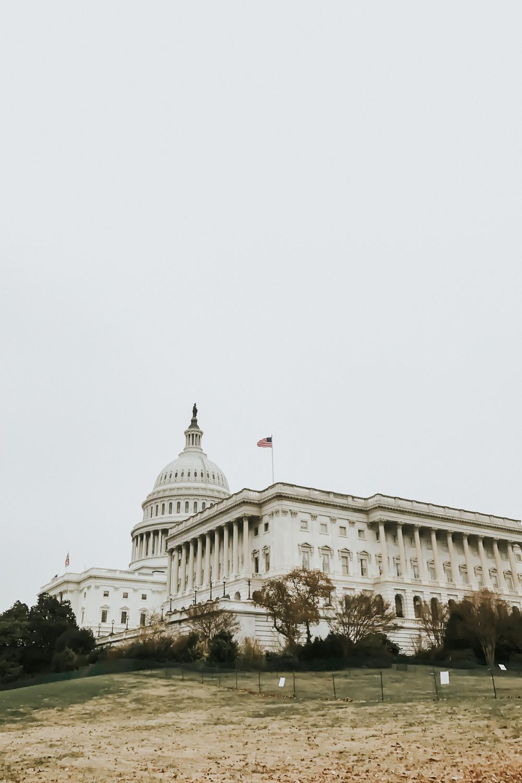 white house-10.jpg