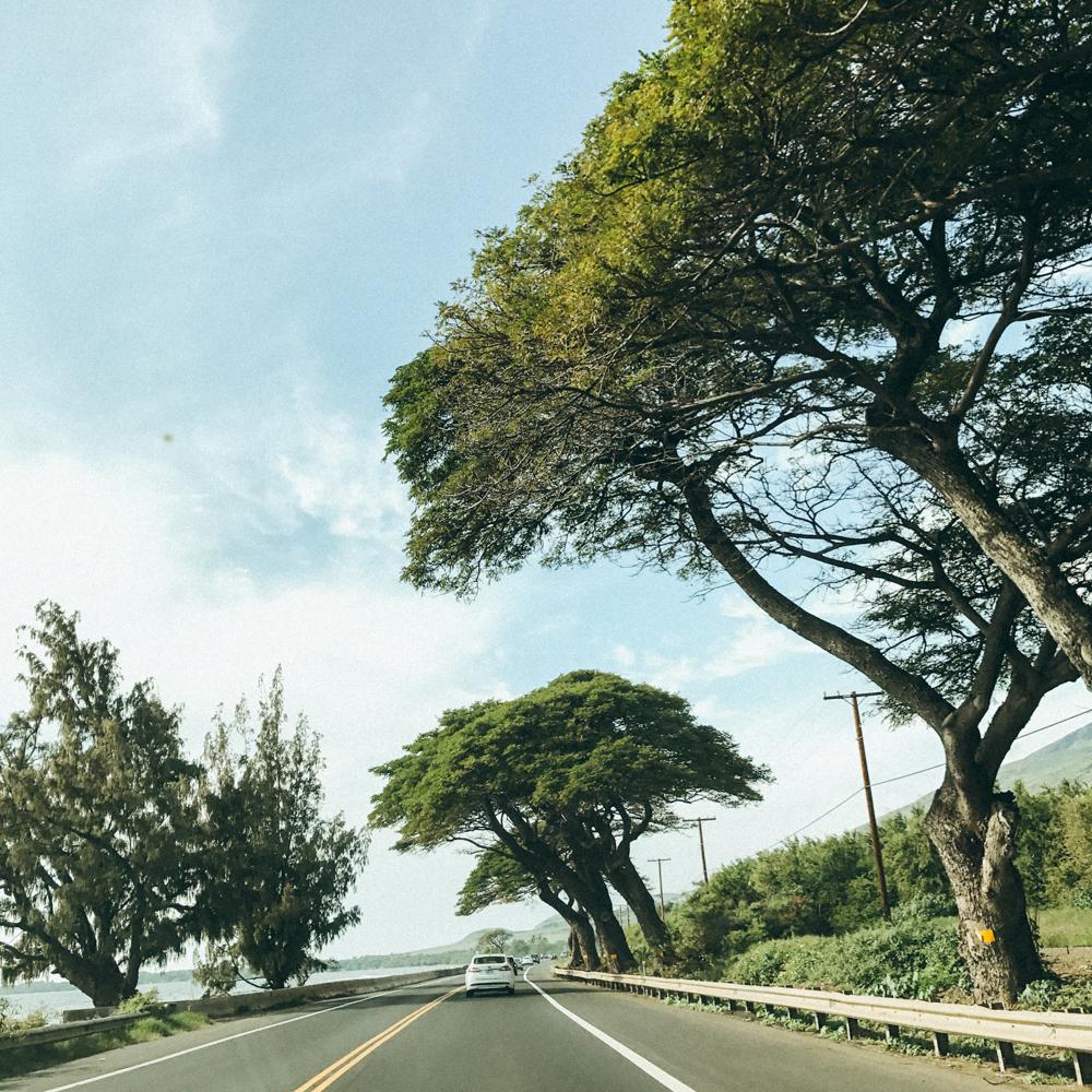 hawaii 2017-42.jpg