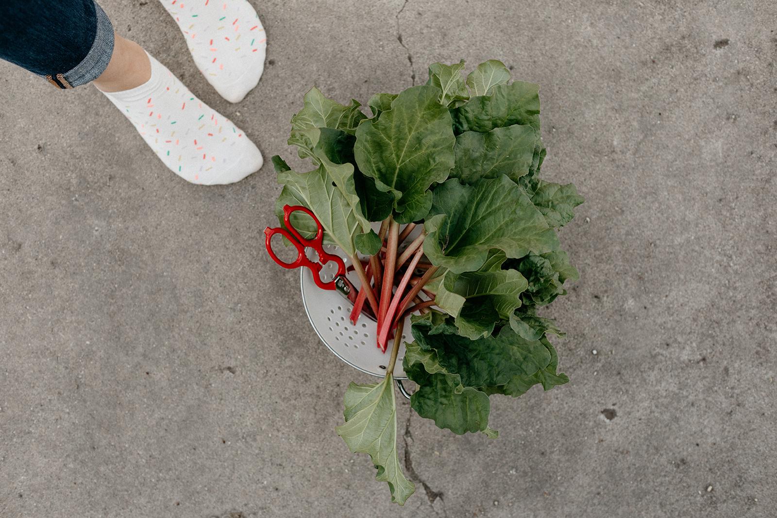 molly-yeh-rhubarb-birthday-cake-4.jpg