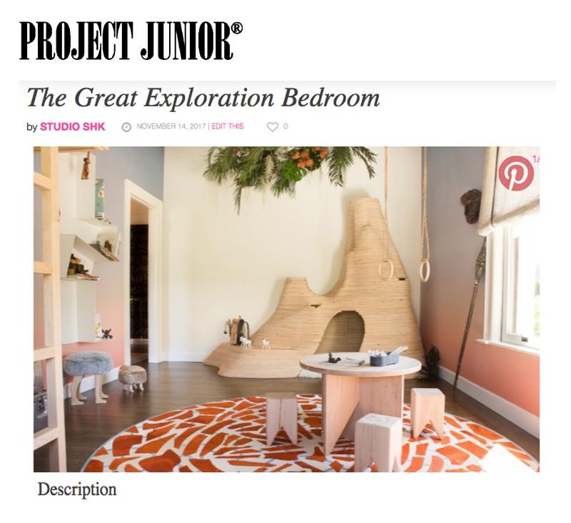 Project Junior