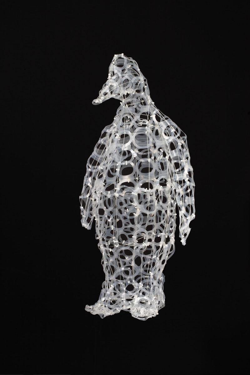 Six Pack Penguin(300 dpi).jpg