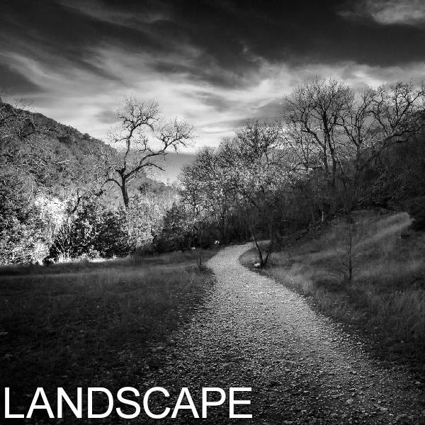 GALLERY_THUMBNAIL-LANDSCAPE.jpg