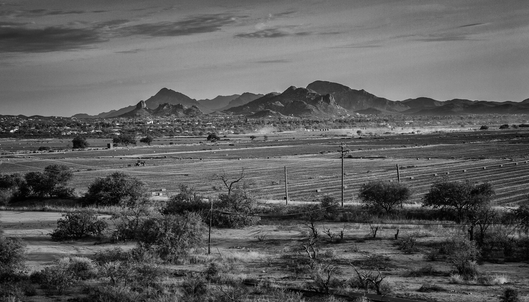 Mission San Xavier del Bac Farms - Tucson