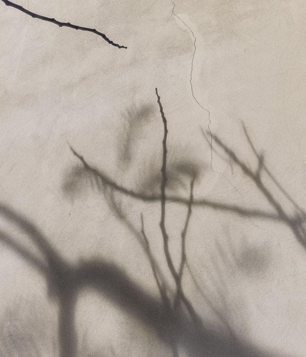 light-and-shade-3.jpg