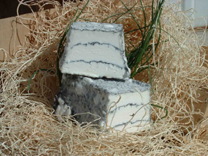 cheeses-Sofia2.jpg