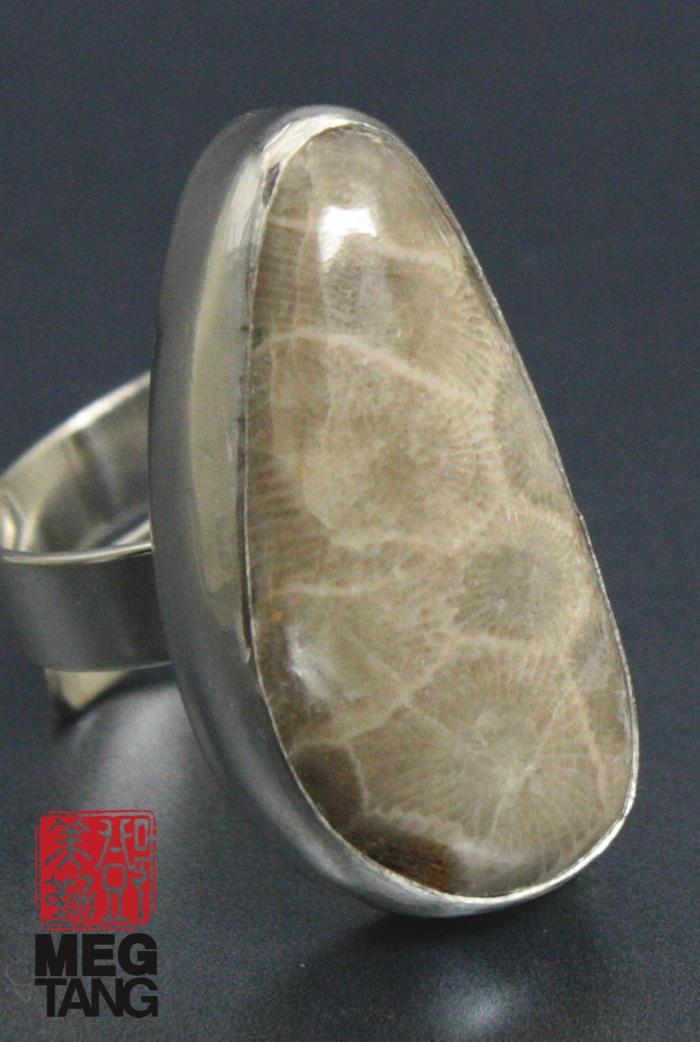Sterling Silver, Petoskey Stone