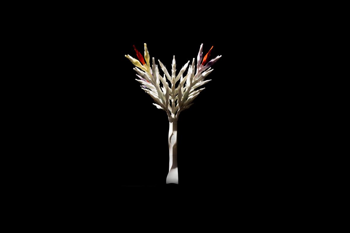 05/31/2016  씨앗에서 나무로 From a seed to a tree