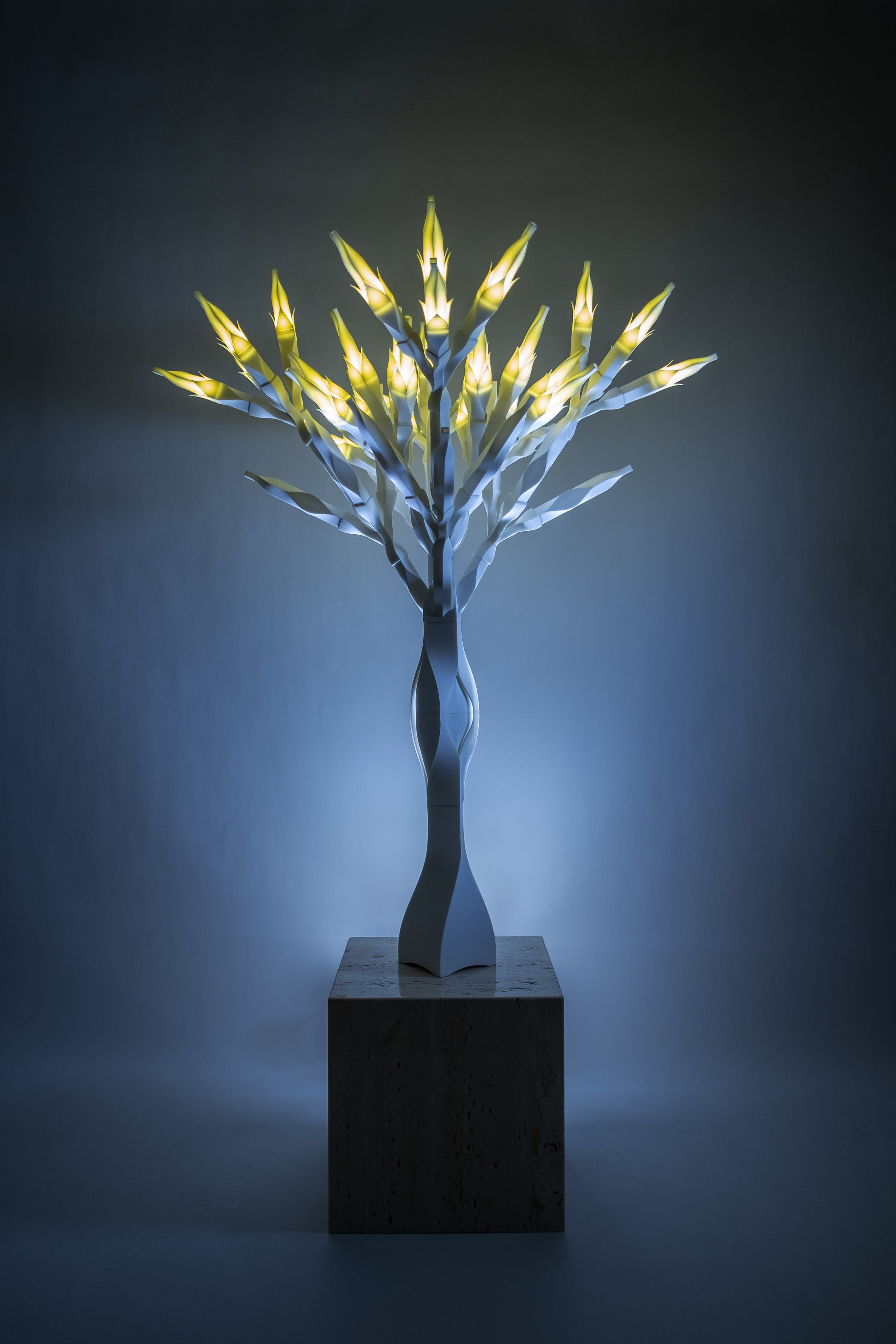 081015 And Tree of Life Compositional Study Four: Infinite Symmetree,  2015, Hand dyed polyamide, wires, LED lights, aluminum pipe, 57 x 36 x 36 inches    INQUIRE