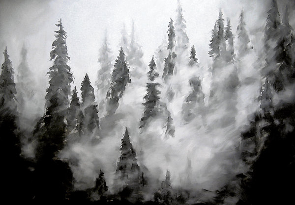 Spruces by Gavin O'Curry (September 2011)