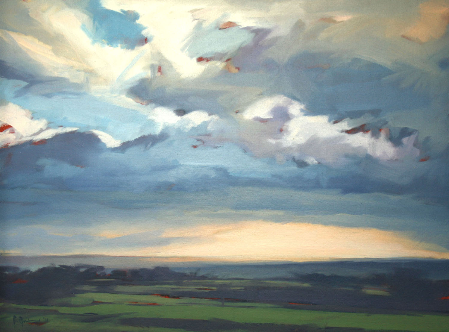 Tracey Quinn_2011_Belshaws_oil on canvas_45 x 60cm.jpg