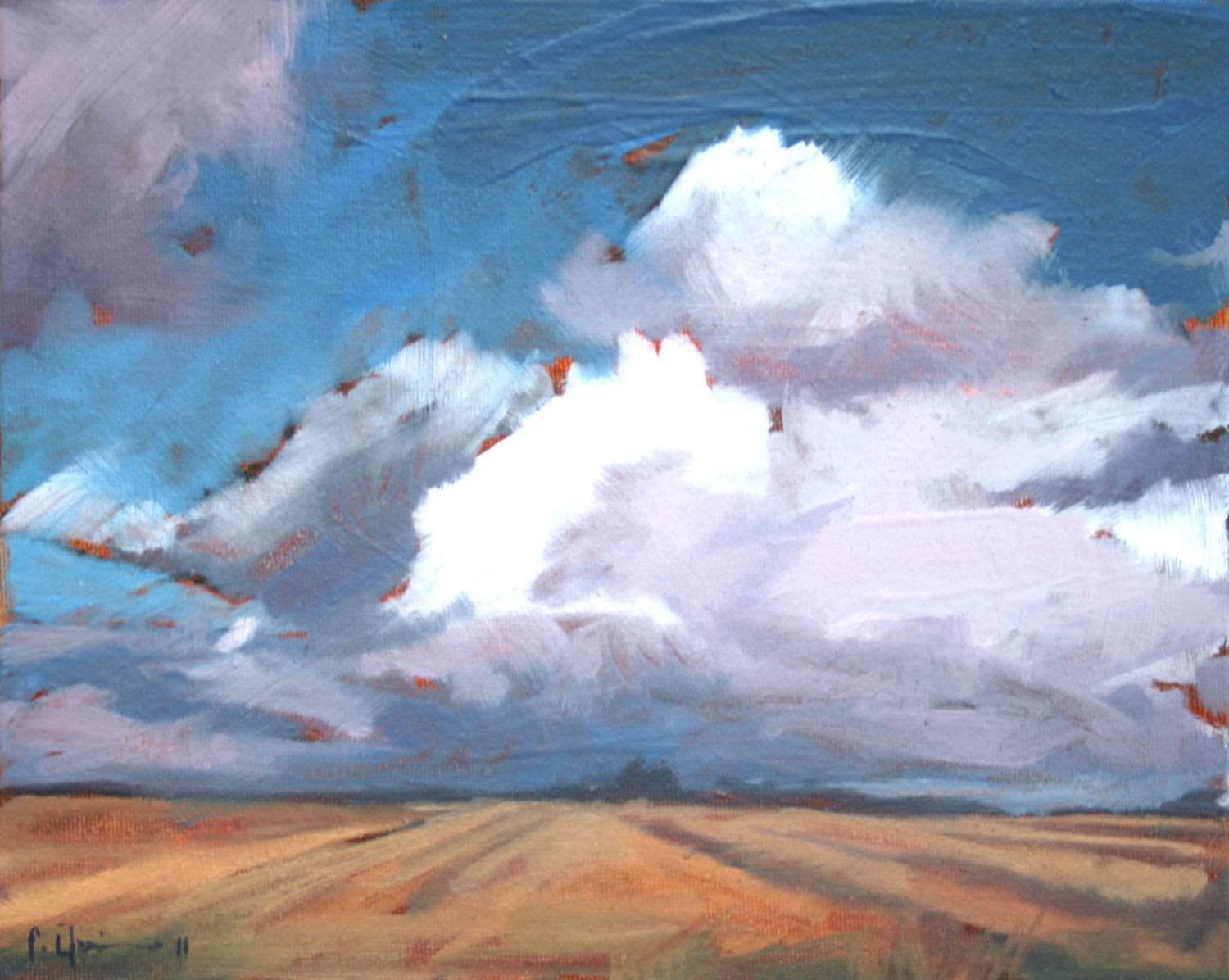 Tracey Quinn_2011_Cloud Cornfield_oil on canvas_20 x 25cm.jpg