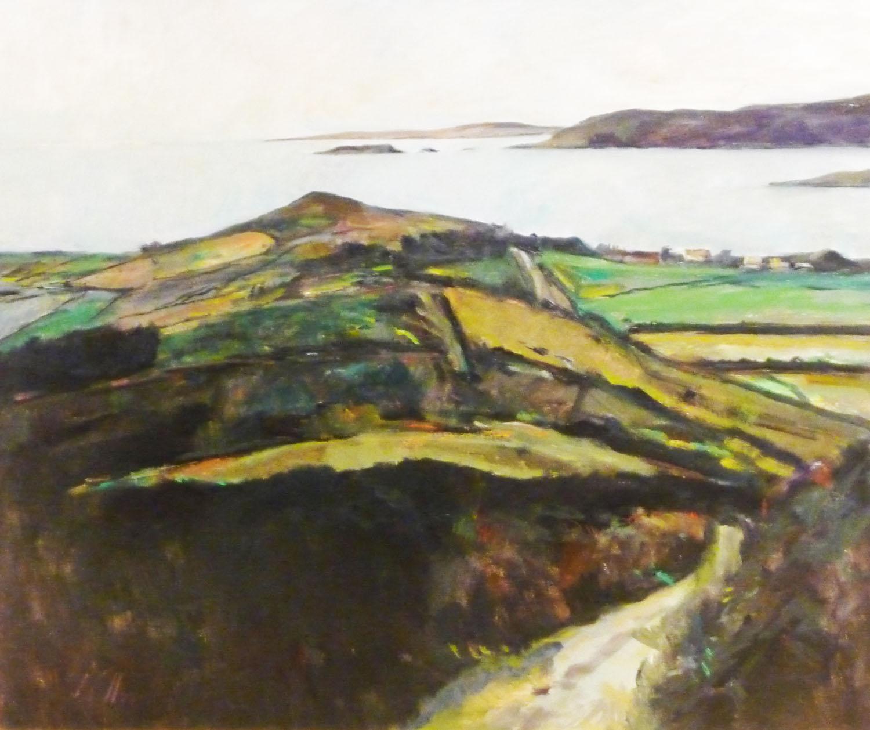 Peter Collis_-_Toe Head, West Cork_63 x 76cm.jpg