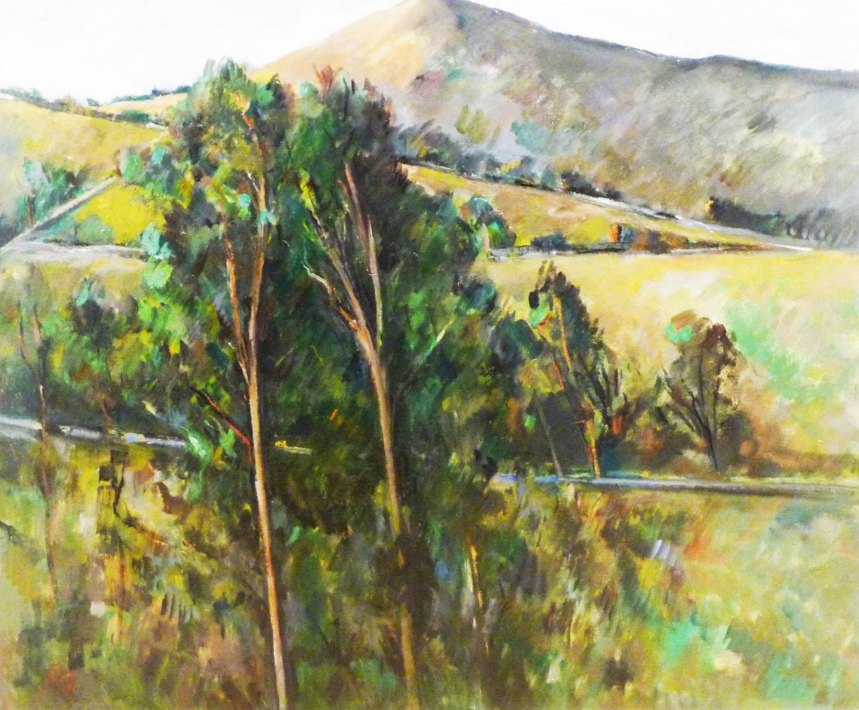 Peter Collis_-_Trees with Sugarloaf_63 x 76cm.jpg
