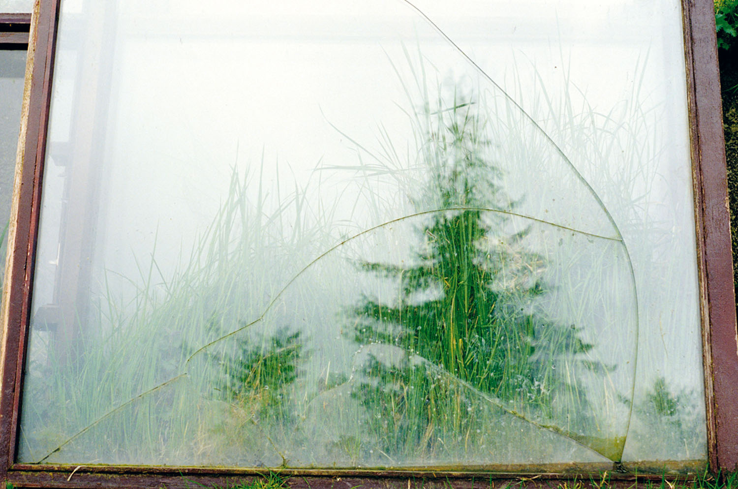 Ruth McHugh_-_Rural Realm_diamond-mount lambda print, ed. of 10_50.8 x 33.6cm.jpg