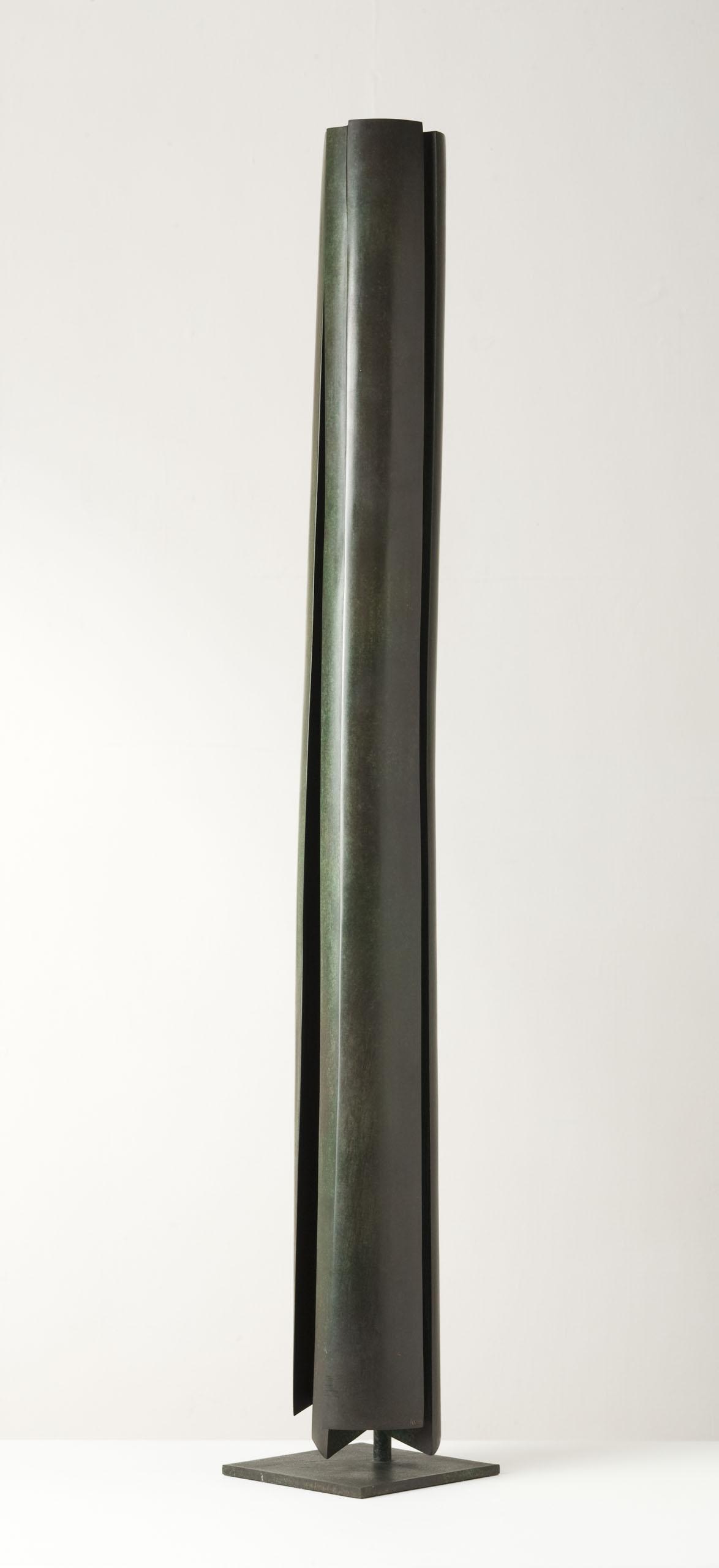 Michael Warren_-_Her Hair II_bronze_88 x 8 x 8cm.jpg