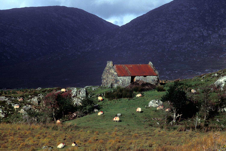 Fergus Bourke_Hill Cottage, Connemara.jpg