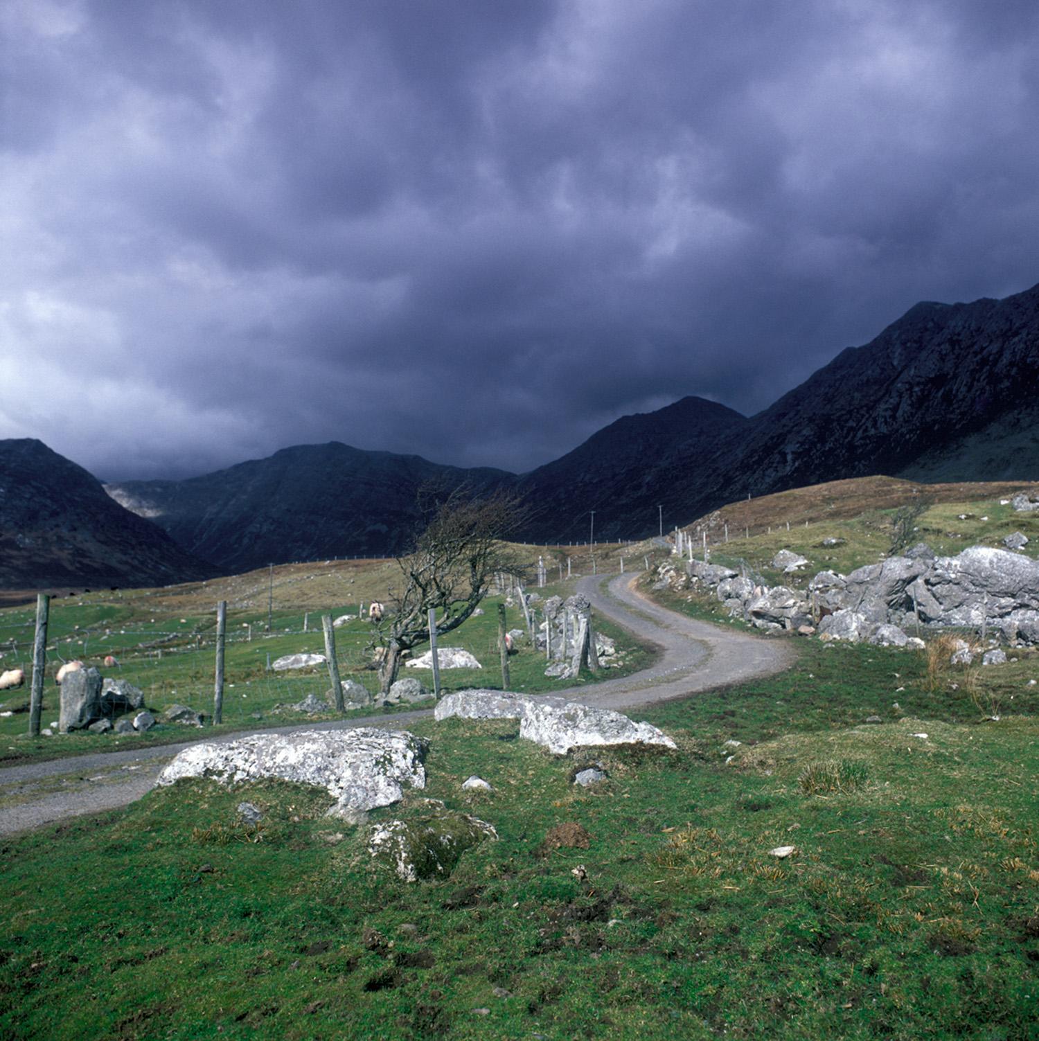 Fergus Bourke_Winding Road.jpg