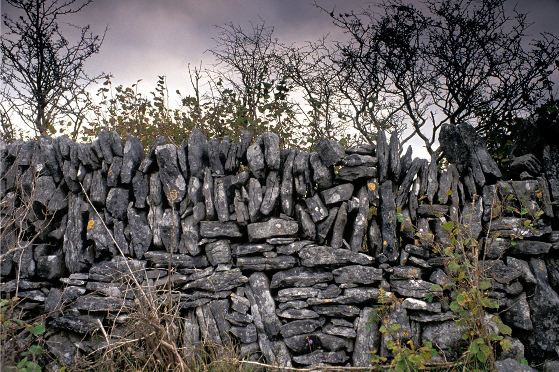 Fergus Bourke_Wall, Connemara.jpg