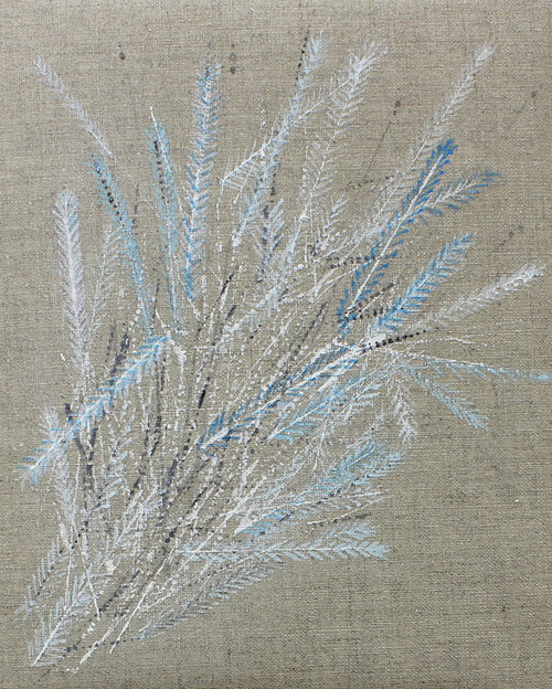 Colette-Murphy_2013_Feather-Bouquet_acrylic-on-linen_20-x-25cm_â'¬450.jpg