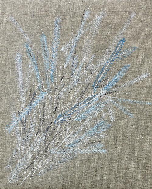 Colette-Murphy_2013_Feather-Bouquet_acrylic-on-linen_20-x-25cm_â'¬450.jpg