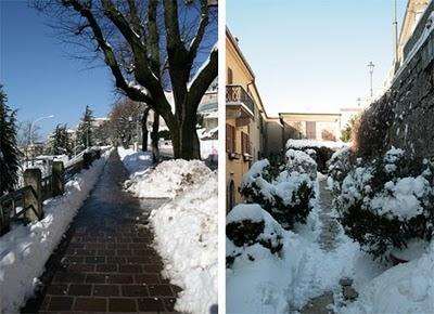 snowypaths.jpg