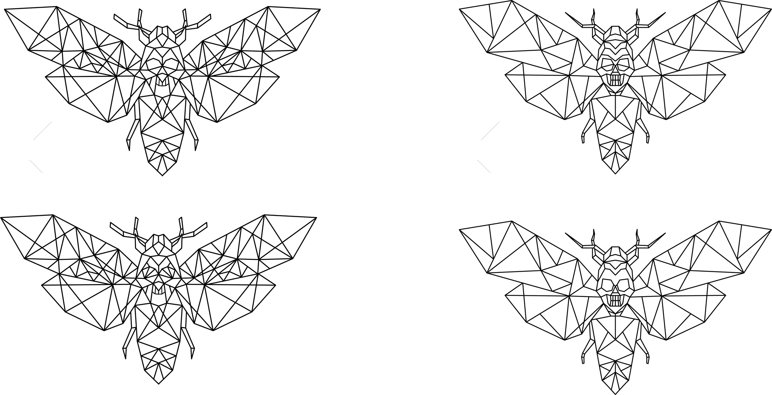 moth_final.png
