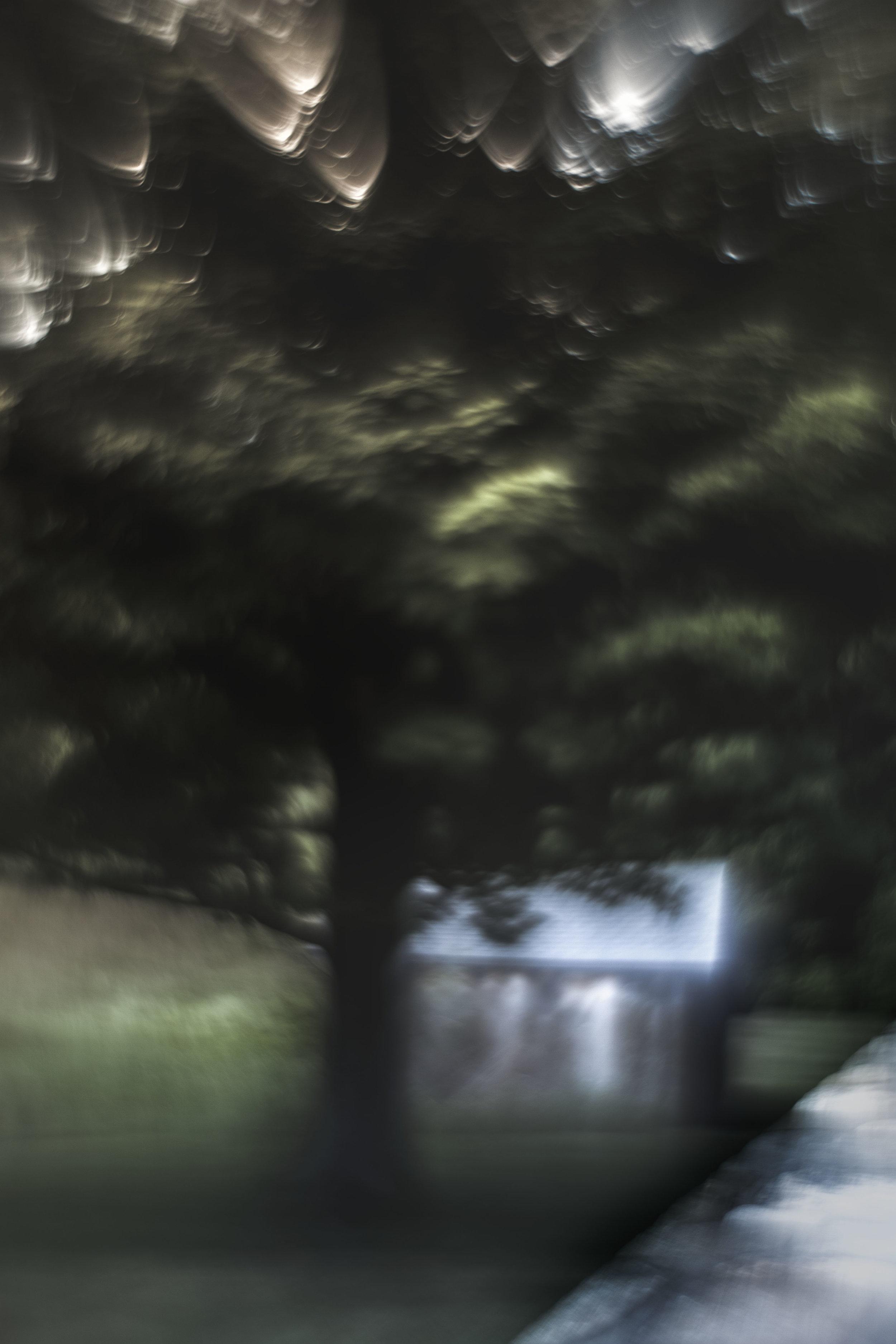 Tree and Hut_1811