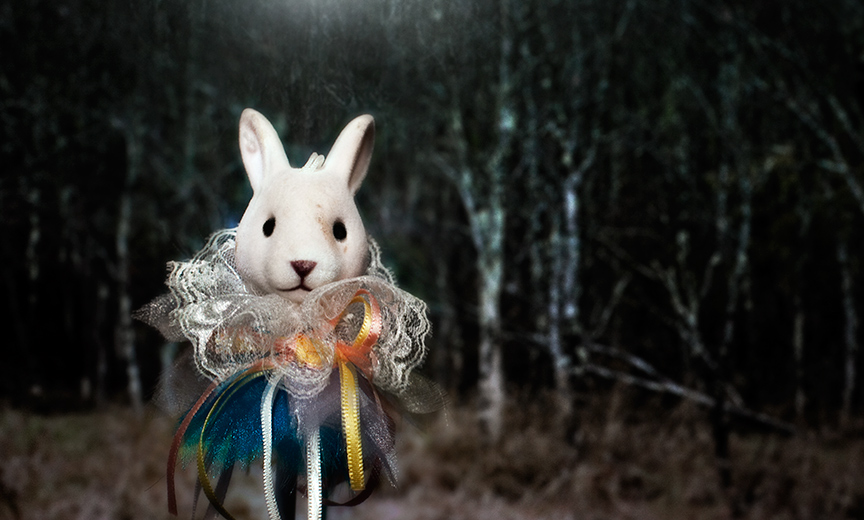 Rabbit-Before-Woods.jpg