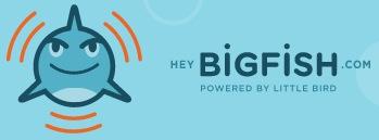 Hey Big Fish.jpg