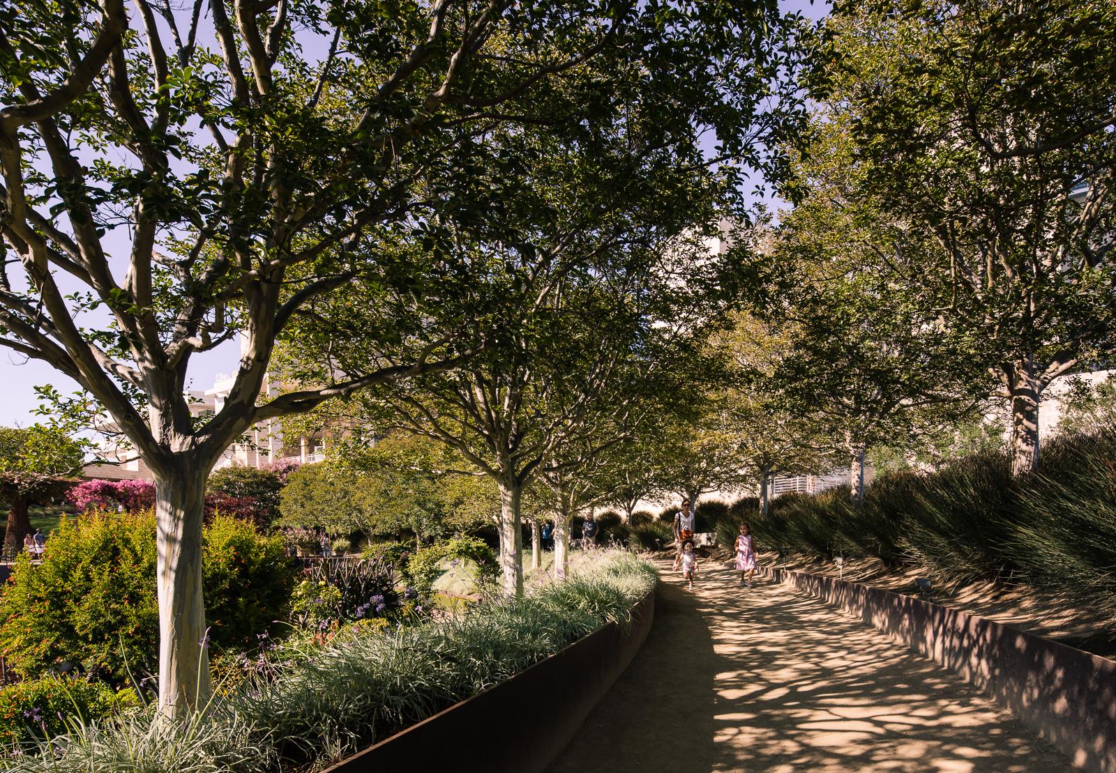 Amazing Garden created by artist Robert Irwin at the Getty Center