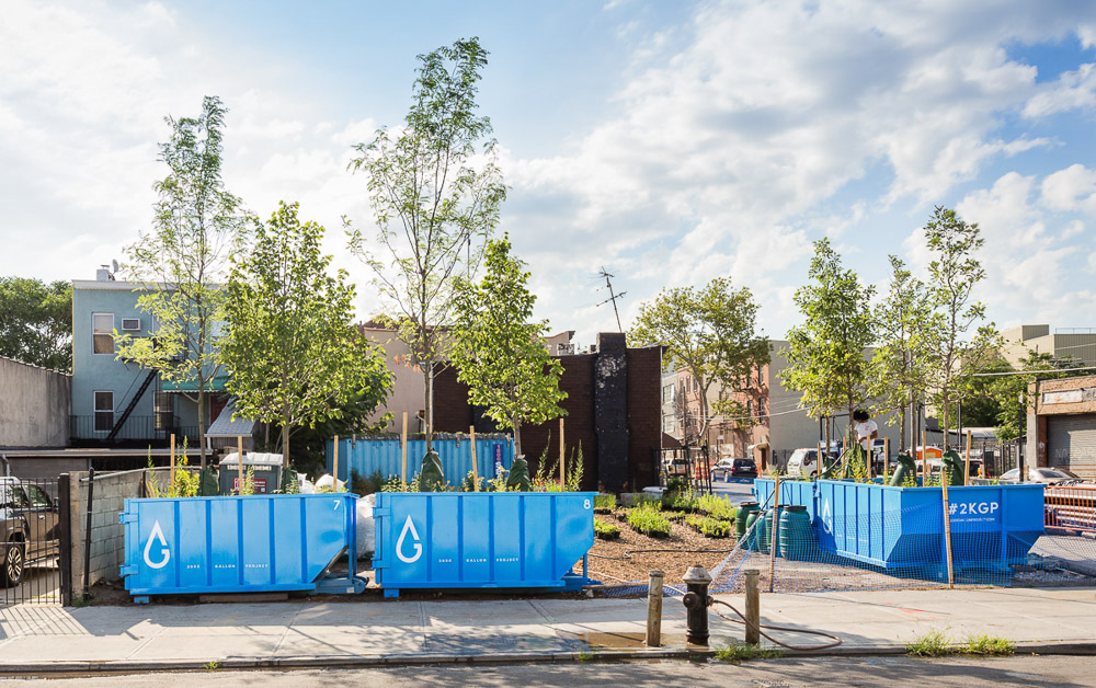 2000 Gallon Project by Alloy and Gowanus Canal Conservancy at 431 Carroll street