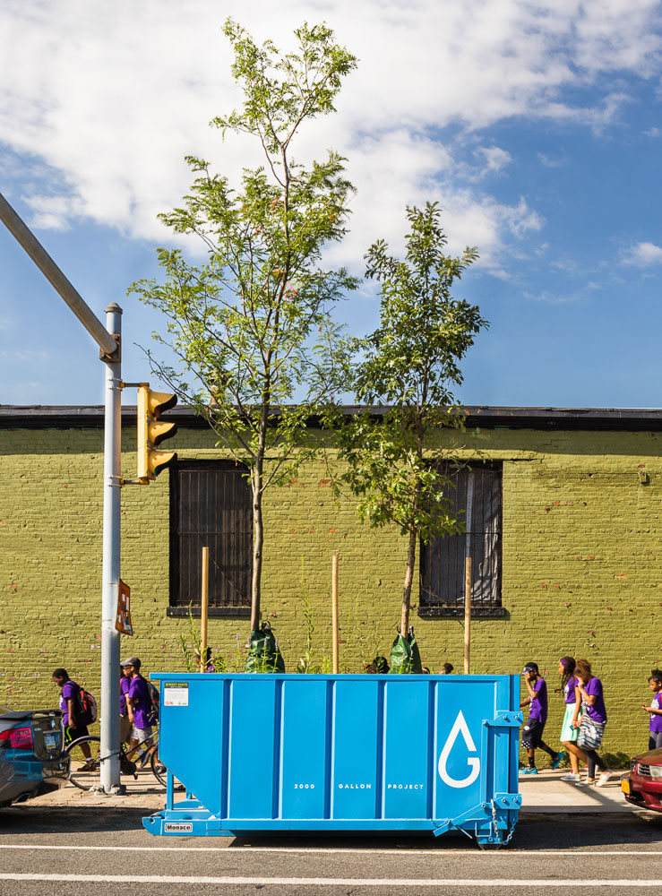 2000 Gallon Project by Alloy and Gowanus Canal Conservancy near Green wall