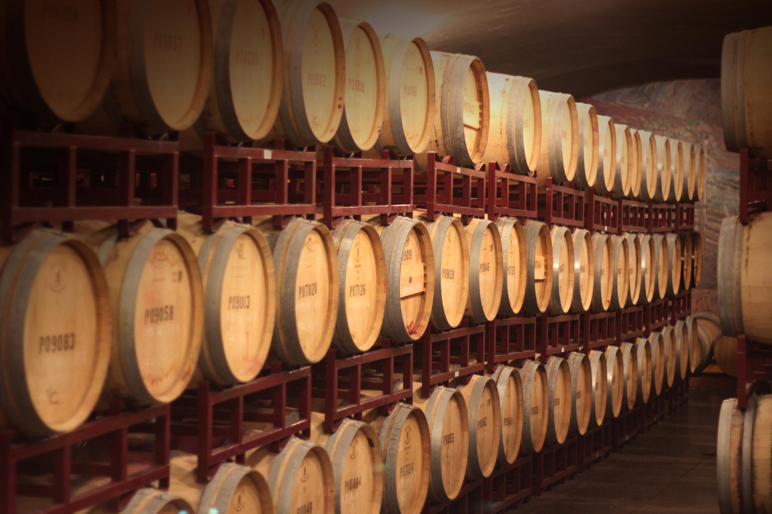 Imbibe Wine Tours   Take in Walla Walla    Book A Tour