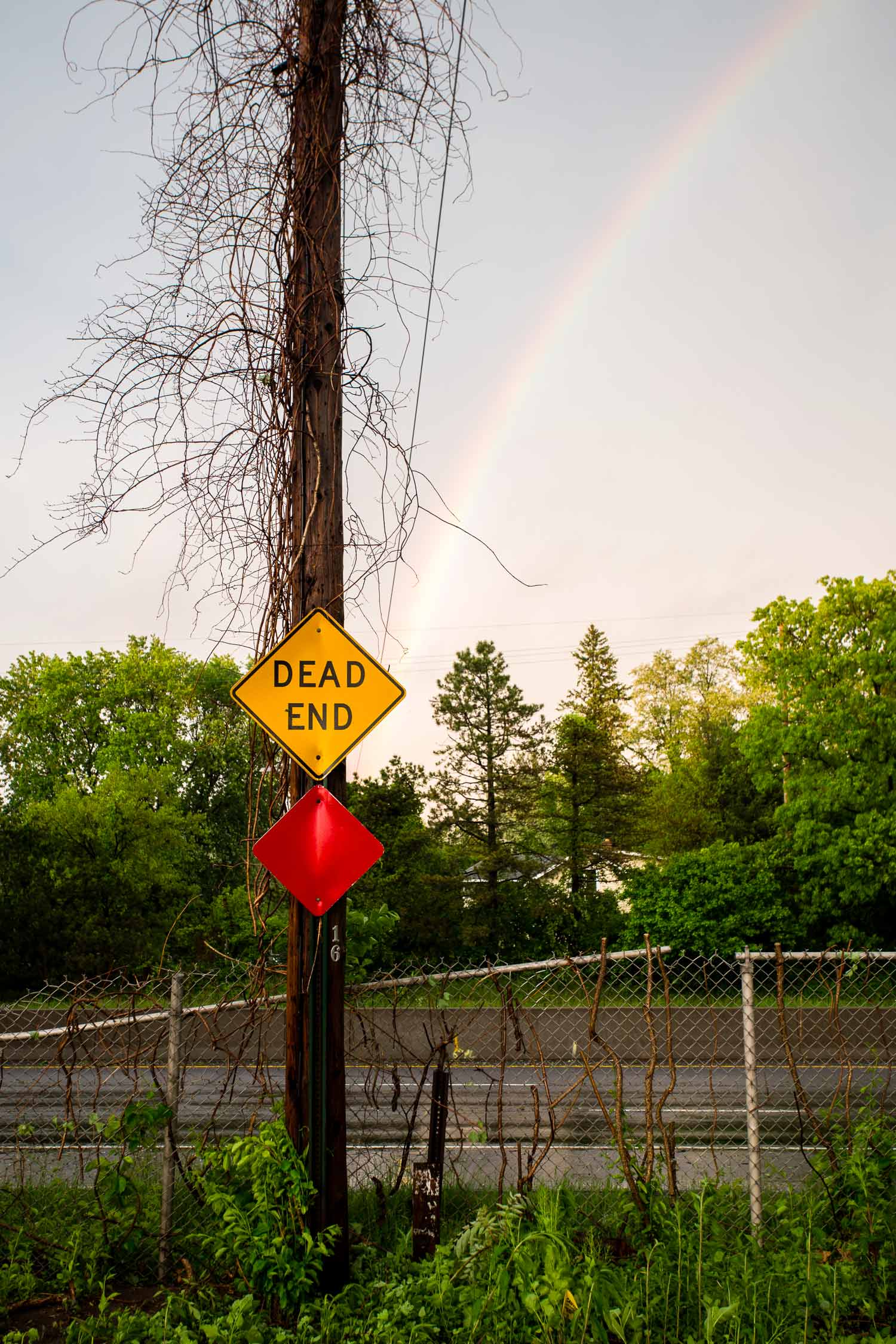 This rainbow decided to make a political statement about life in the suburbs.