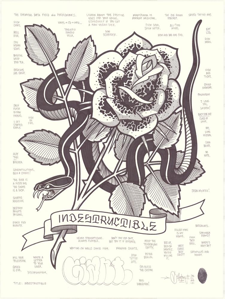 Indestructible_th.jpg