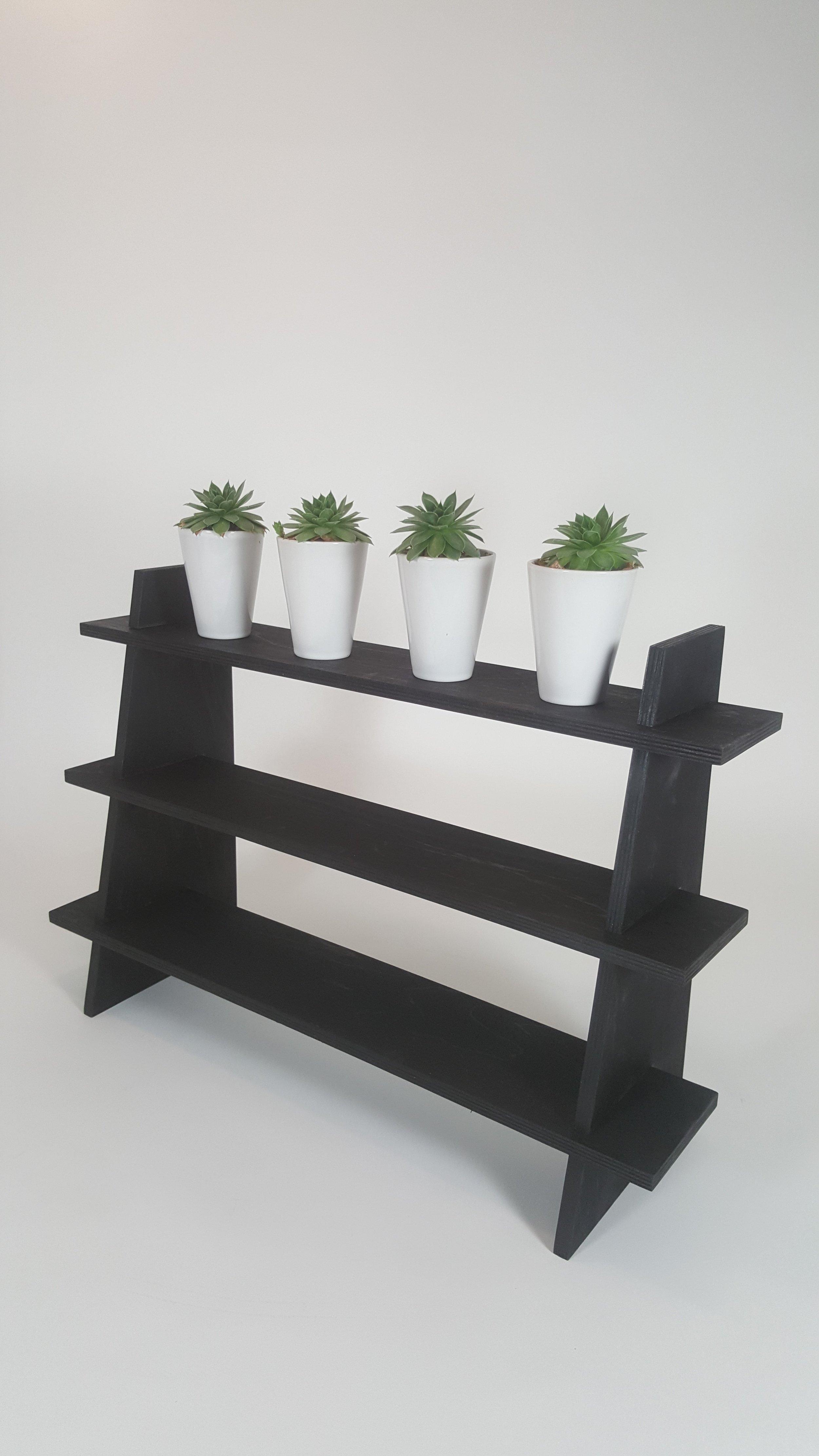 black display shelf.jpg
