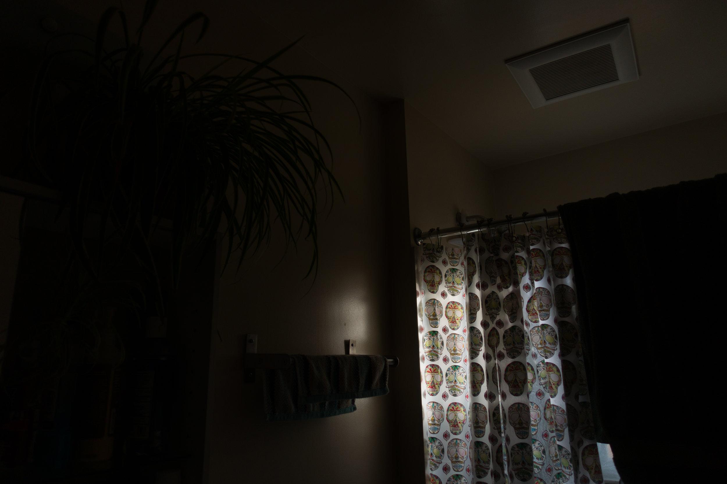 20180326-shadow_and_light-001.jpg