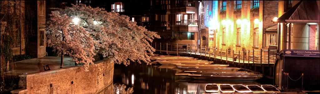 Punts auf dem Fluss Cam in Cambridge