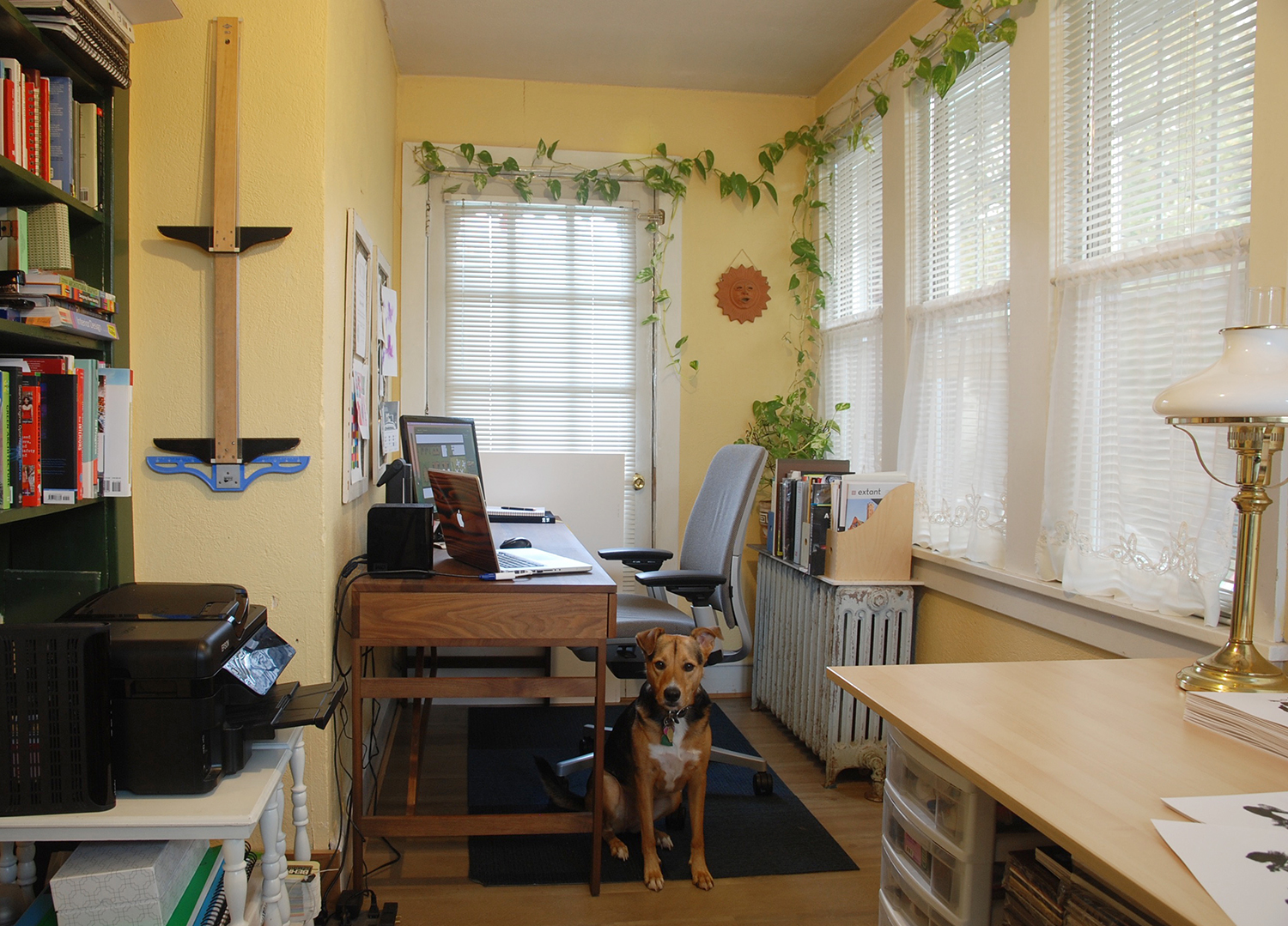 Yup, that's my studio dog in the photograph (but she usually sleeps on the job)