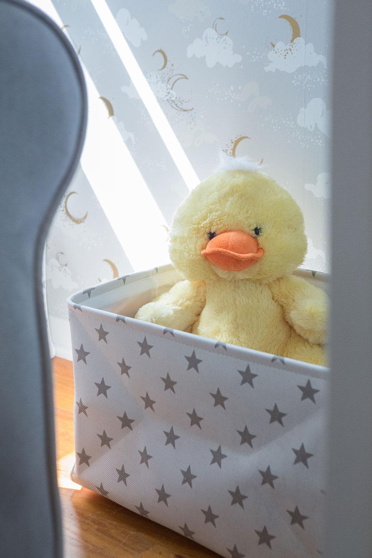 Baby's Room Duck