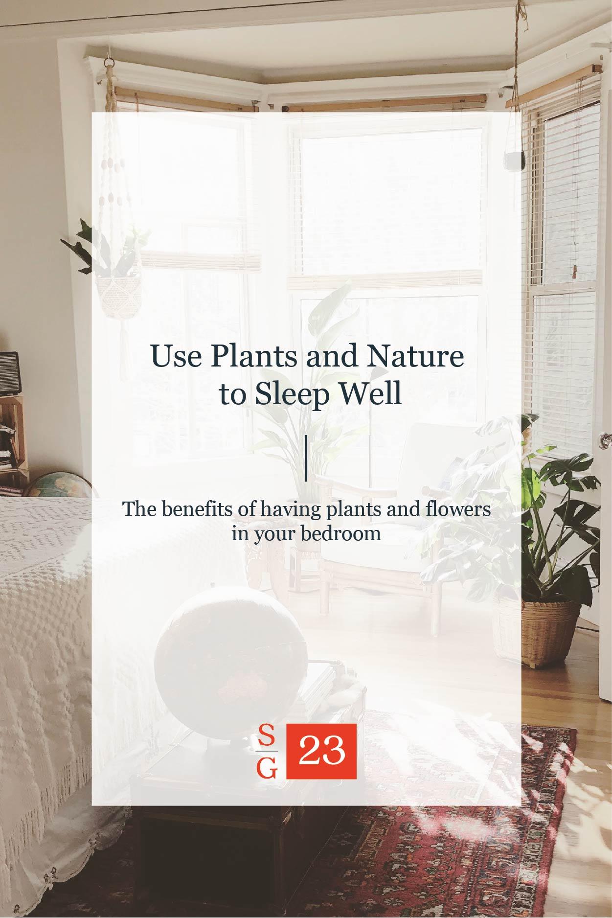 plants-in-bedroom-01.jpg