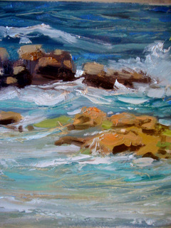 Shoreline Study